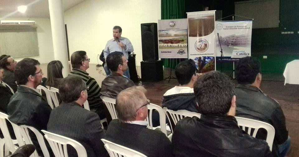 Plantean reforestación como negocio económico en Paraguay