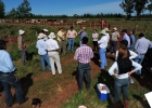Comisión de Desarrollo Forestal realizó su primera salida de campo