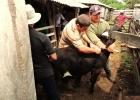 CAS de la ARP y VMG realizaron jornada de sanitación animal
