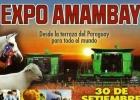 Expo Amambay se apresta a mostrar lo mejor de su potencial de trabajo